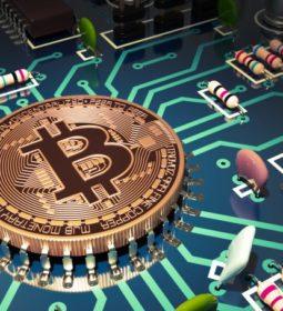 کولاژ - 10 عکس از سهام بیت کوین که تاکنون دیدهاید