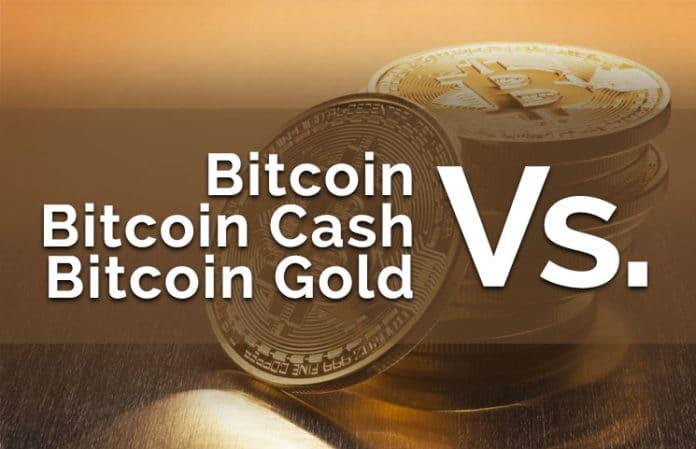bitcoin vs bitcoin cash vs bitcoin gold 696x449 امین محقق