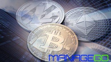 ManageGo پرداخت اجاره بها با رمزارز ها را ممکن می سازد