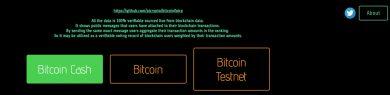 2 14 year old blockchain developer 390x95 ساخت پلتفرم رای گیری در بستر بلاکچین توسط یک نوجوان 14 ساله