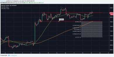 3 market analysis pt7 390x194 تحلیل قیمت رمزارز بیت کوین: رشد قیمت ها چه زمانی آغاز می شود؟