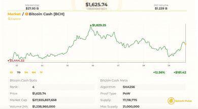رشد 4 درصدی بازار بیت کوین کش در معاملات دیروز