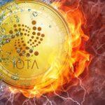 آیوتا اعلام کرد موفق شده اشکال کیف پول هک شدهی Trinity را اصلاح کند