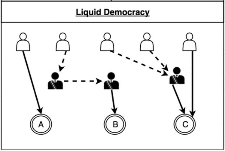 کارکرد سیستم liquid democracy