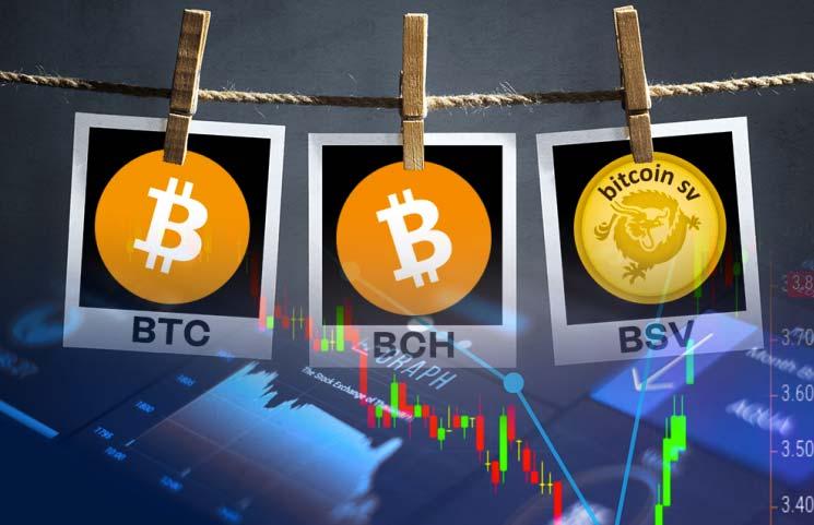 به هالوینگ Bitcoin Cash و Bitcoin SV نزدیک میشویم